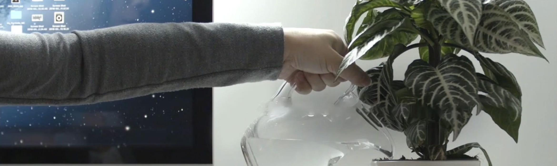 Muž zalévá rostlinu